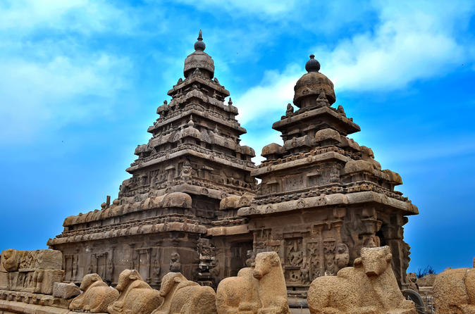 best tour operator for customized holidays to India